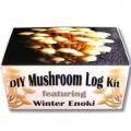Enoki-DIY-Mushroom-Log-Kit