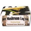 Westwood-Oyster-DIY-Mushroom-Log-Kit