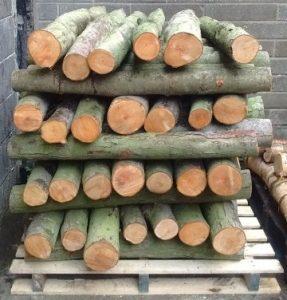 Mushroom Log Stack
