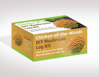 Chicken-of-the-Woods Mushroom Log Kit
