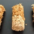 Sawdust Spawn Pellets