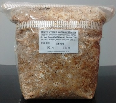 Sawdust Spawn - 1kg Bags In Stock